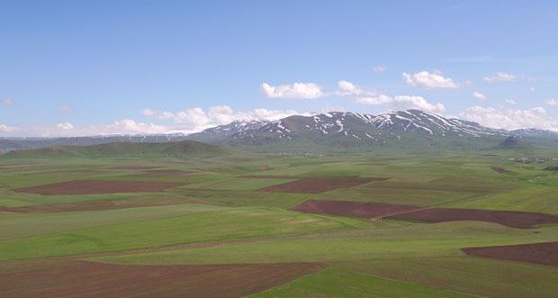 Erzurum, Erzincan ve Ağrı İllerinde Toplulaştırma Çalışmaları Devam Ediyor