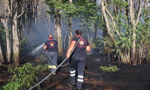 Çıkan yangın ortak çalışma sonrası söndürüldü