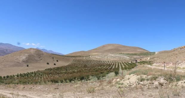 Tarımsal Üretim Yapan Tesisler Ziyaret Edildi