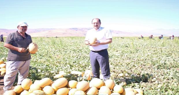 Tarım Sektörüne Yatırımlar İvme Kazanmaya Başladı