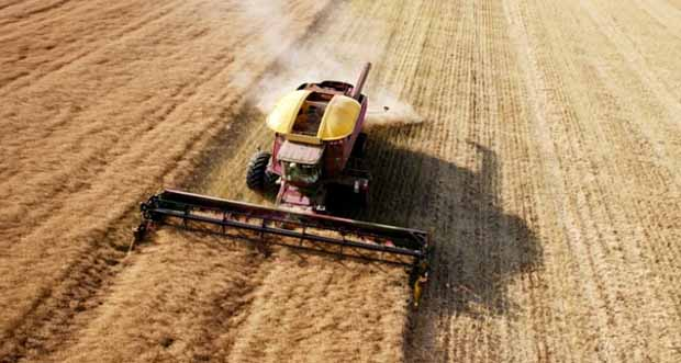 Tarım- ÜFE Ağustos ayında %0,70 azaldı