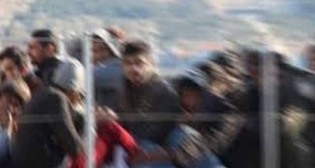 Yakalanan 21 Düzensiz Göçmen Erzincan Göç İdaresi Müdürlüğüne teslim edilecek