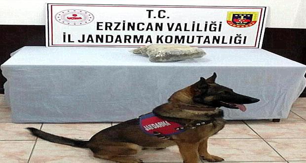 Erzincan'da, 875 Gram Kubar Esrar Ele Geçirildi