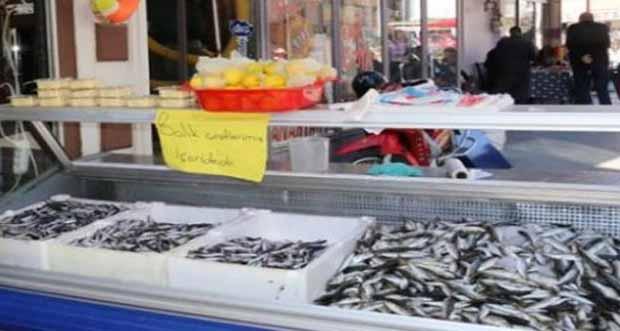 Tezgahlar balıkla doluyor