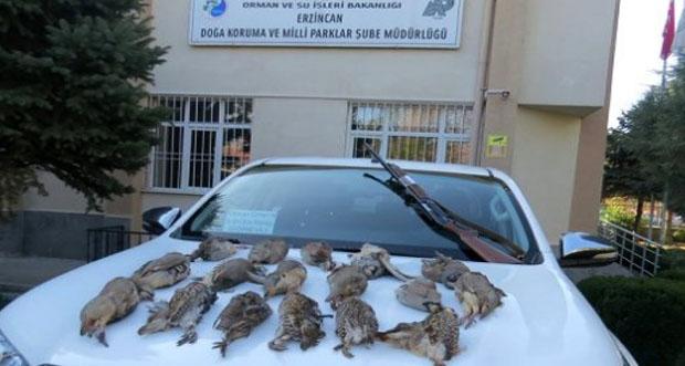 Erzincan'da usulsüz keklik avcılarına para cezası
