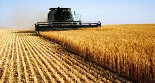 Tarım- ÜFE Kasım ayında %1,76 arttı