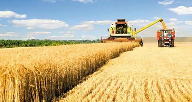 Erzincan'da desteklenecek tarım ürünleri açıklandı