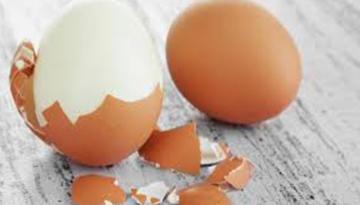 Yumurta kabukları şifa dağıtıyor
