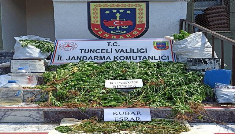 Tunceli-Merkez Kırsalında Gerçekleştirilen Operasyonda Esrar ve Kenevir Bitkisi Ele Geçirildi