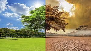 Küresel ısınmayı durdurmak için yapabileceğiniz 10 şey